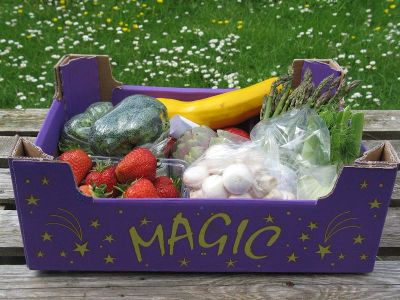 Magic veg